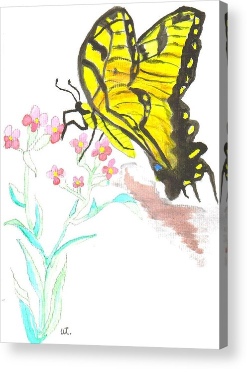 Butterfly Flowers Watercolor Acrylic Print featuring the painting Butterfly At Play by Warren Thompson