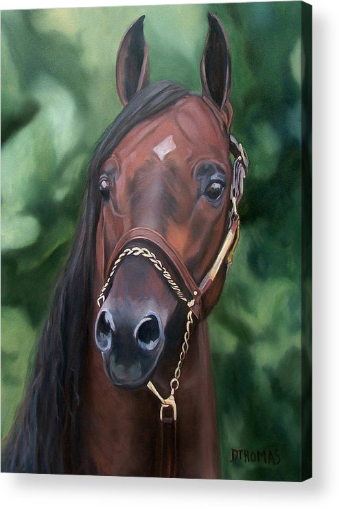 Horse Portrait Acrylic Print featuring the painting Dont Worry Saddlebred Sire by Donna Thomas