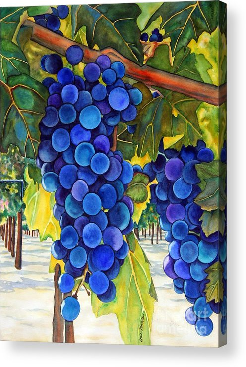 Grapes Acrylic Print featuring the painting From The Vineyard by Gail Zavala
