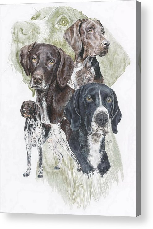 Gshp Acrylic Print featuring the mixed media German Shorted-haired Pointer Revamp by Barbara Keith