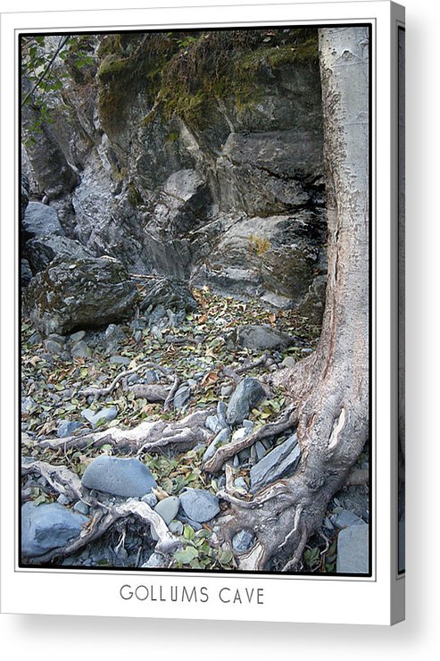 Trees Acrylic Print featuring the photograph Gollum's Cave by Karen W Meyer