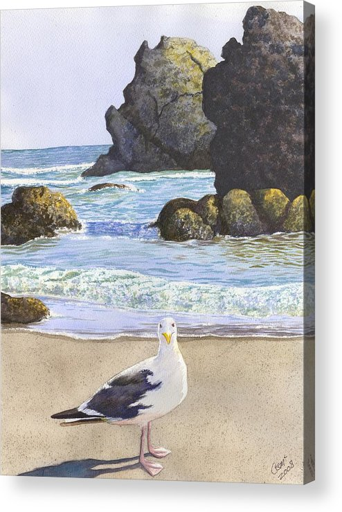 Oregon Coast Acrylic Print featuring the painting Harris Beach by Catherine G McElroy