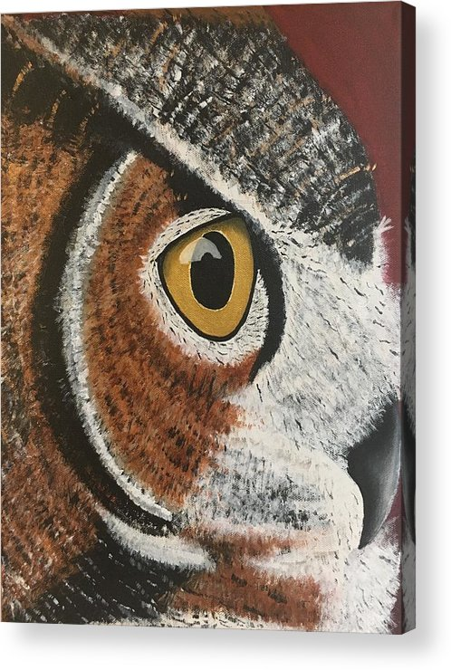Owl Acrylic Print featuring the painting Ibis by Renae Shore