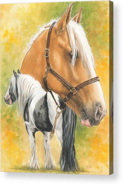 Draft Horse Acrylic Print featuring the mixed media Irish Cob by Barbara Keith