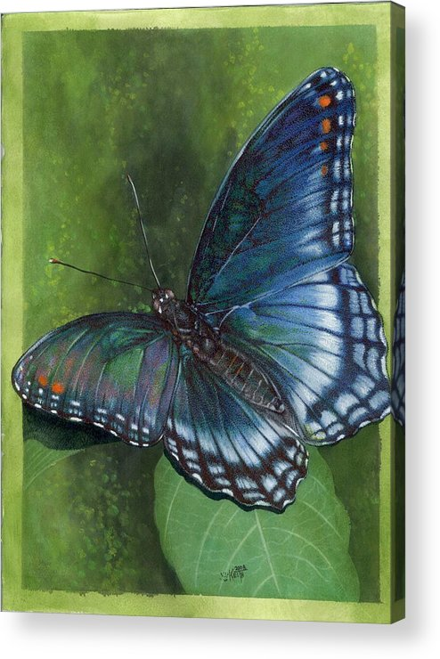 Insects Acrylic Print featuring the mixed media Jewel Tones by Barbara Keith