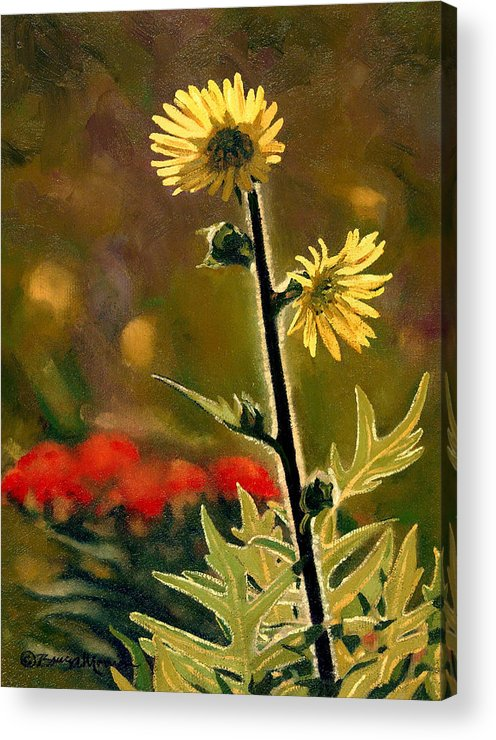Prairie Flowers Acrylic Print featuring the painting July Afternoon-compass Plant by Bruce Morrison