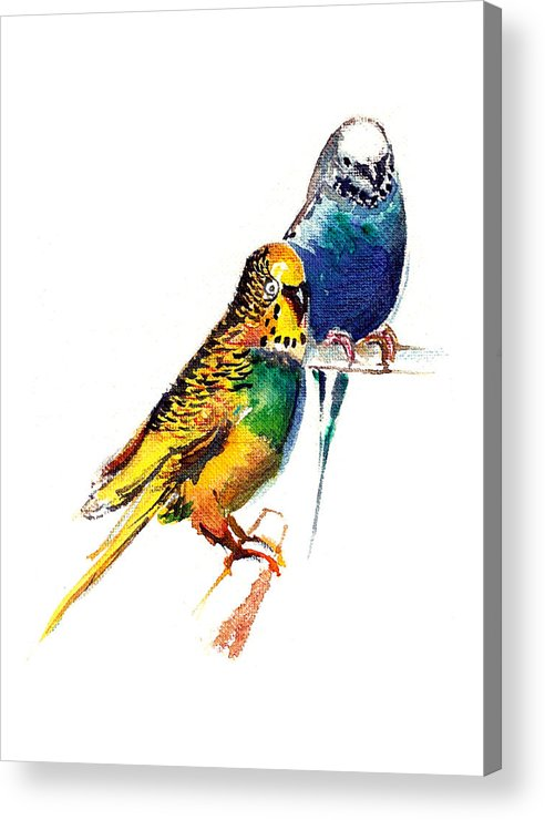 Nature Acrylic Print featuring the painting Love Birds by Anil Nene