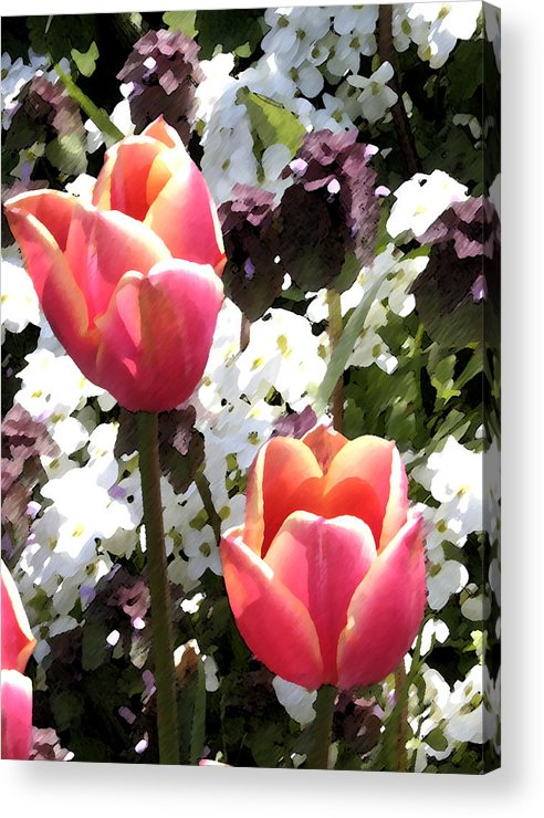 Tulips Acrylic Print featuring the digital art Love Tulips by Mary Gaines