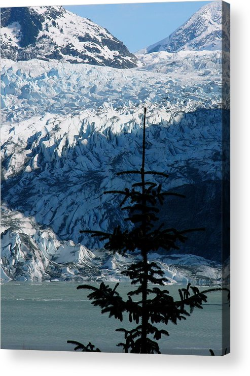 Glaciers Acrylic Print featuring the photograph Mendenhall Glacier by Kenna Westerman