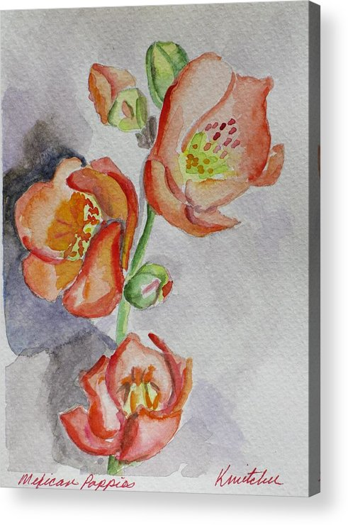 Floral Acrylic Print featuring the painting Mexican Poppies by Kathy Mitchell