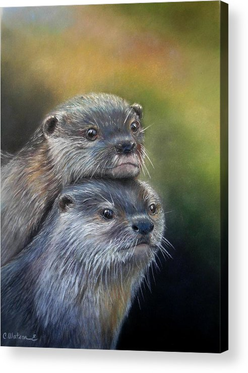 River Otter Acrylic Print featuring the painting Otter Be Two by Ceci Watson