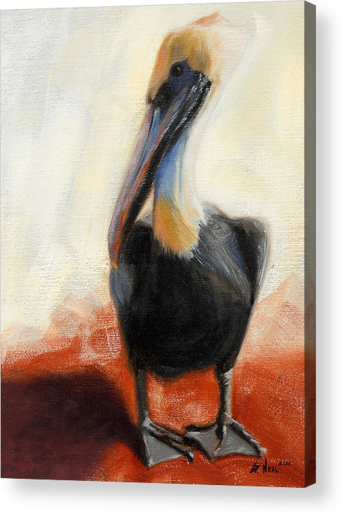 Pelican Acrylic Print featuring the painting Pelican Study by Greg Neal