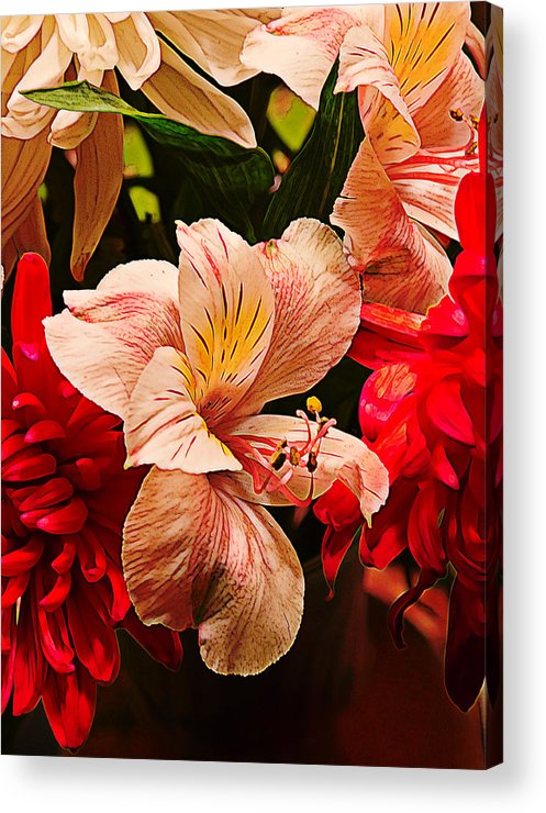Yellow Acrylic Print featuring the photograph Peruvian Lily Grain by Bill Tiepelman