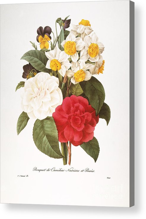 1833 Acrylic Print featuring the photograph Redoute: Bouquet, 1833 by Granger
