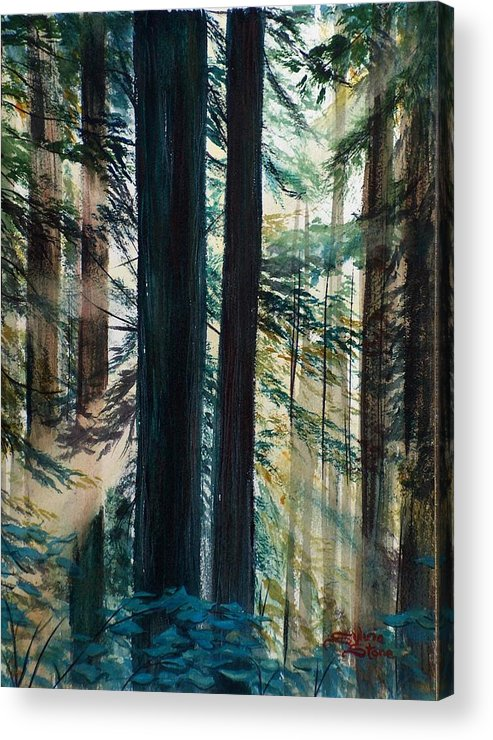 Redwood Acrylic Print featuring the painting Redwood Light by Sylvia Stone