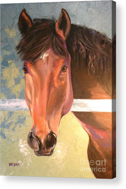 Horse Acrylic Print featuring the painting Reverie - Quarter Horse by Susan A Becker