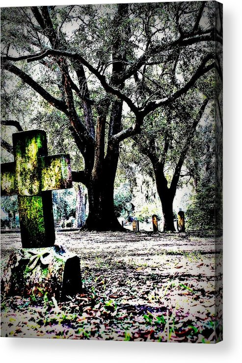 Tree Acrylic Print featuring the photograph Sacred Rest by Jill Tennison