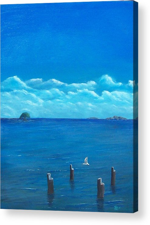 Seascape Acrylic Print featuring the painting Seagull Seascape IIi by Tony Rodriguez