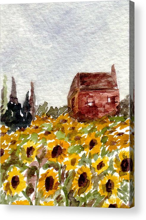 Original Art Acrylic Print featuring the painting Sonoma Hillside Series Sunflowers by K Hoover