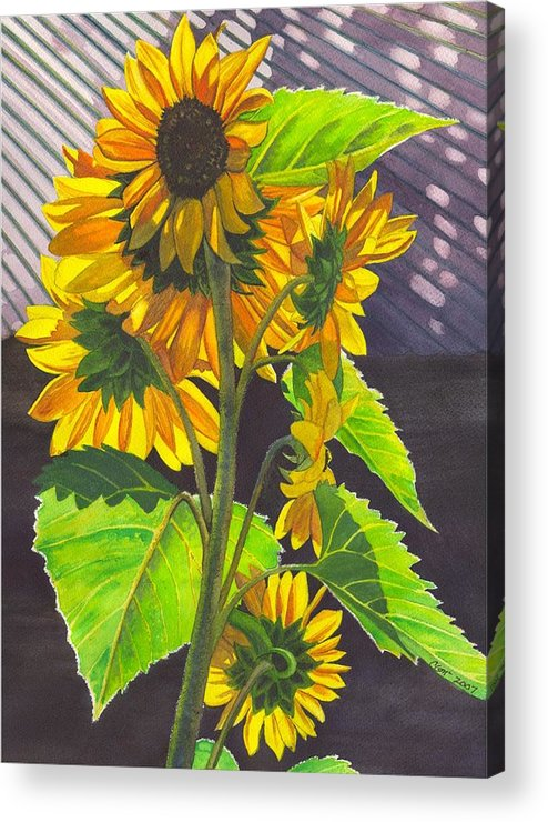 Sunflowers Acrylic Print featuring the painting Stalk Of Sunflowers by Catherine G McElroy