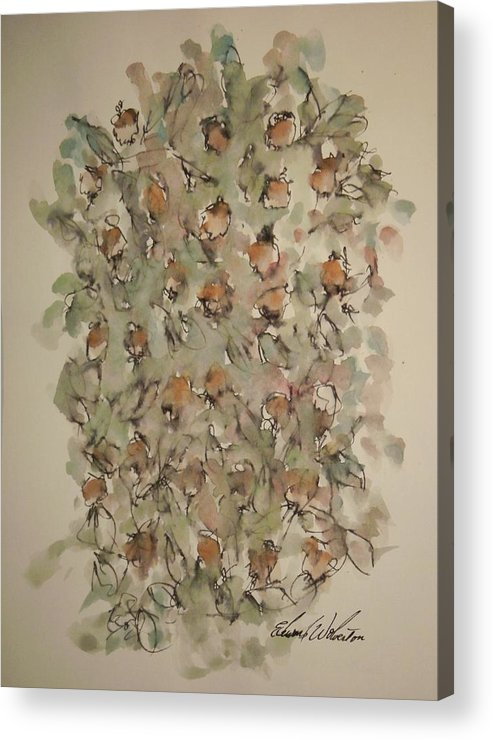 Floral Acrylic Print featuring the painting Study Of Flowers Q by Edward Wolverton
