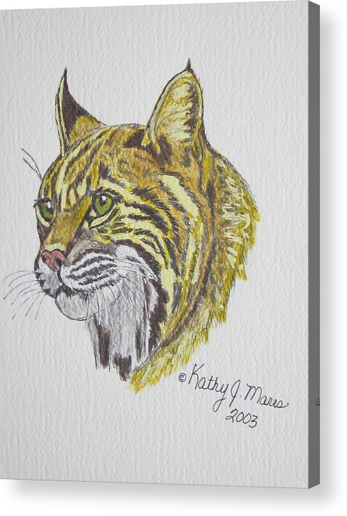 Wild Bobcat Acrylic Print featuring the painting Wild Bobcat by Kathy Marrs Chandler