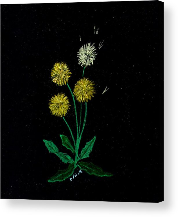 Flowers Acrylic Print featuring the pastel Dandy Lions by Diane Frick