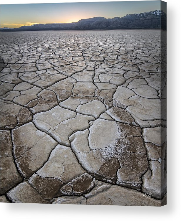 Alvord Desert Acrylic Print featuring the photograph Desert Playa Circle by Leland D Howard