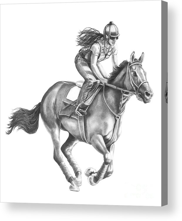 Horse Acrylic Print featuring the drawing Full Gallop by Murphy Elliott