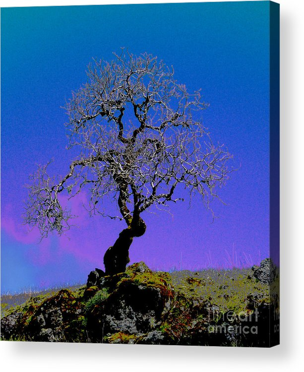 Spring Acrylic Print featuring the photograph Ghost Tree by JoAnn SkyWatcher