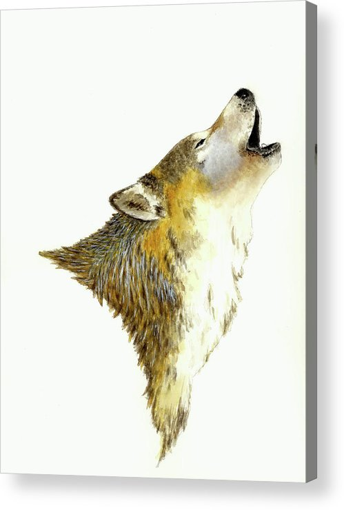 Animals Acrylic Print featuring the painting Howling Wolf by Michael Vigliotti