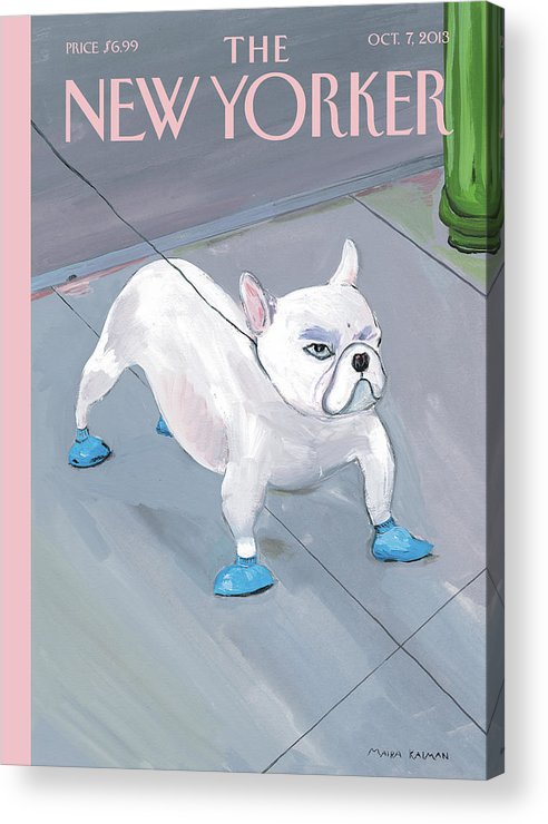 Dog Acrylic Print featuring the painting Blue Dog by Maira Kalman