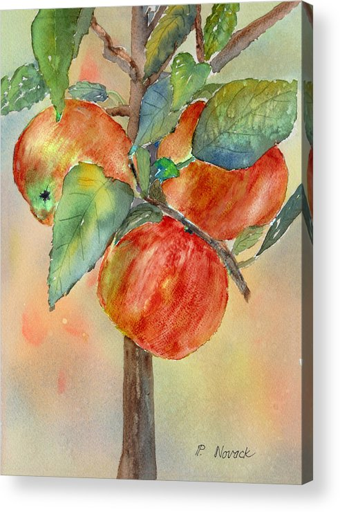 Apple Acrylic Print featuring the painting Apple Tree by Patricia Novack