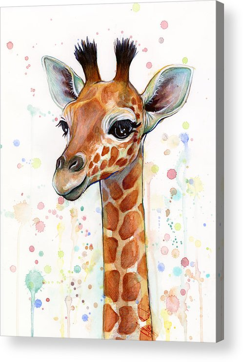 Watercolor Acrylic Print featuring the painting Baby Giraffe Watercolor by Olga Shvartsur