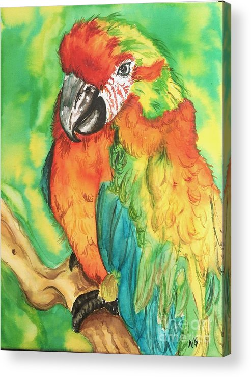 Nature Acrylic Print featuring the painting Chico by Norma Gafford