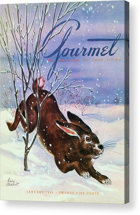 Illustration Acrylic Print featuring the photograph Gourmet Cover Of A Rabbit On Snow by Henry Stahlhut