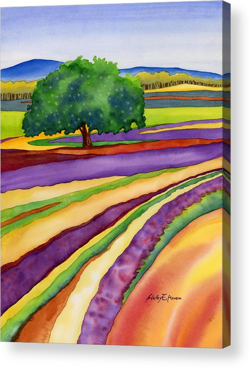 Lavender Acrylic Print featuring the painting Lavender Field by Hailey E Herrera