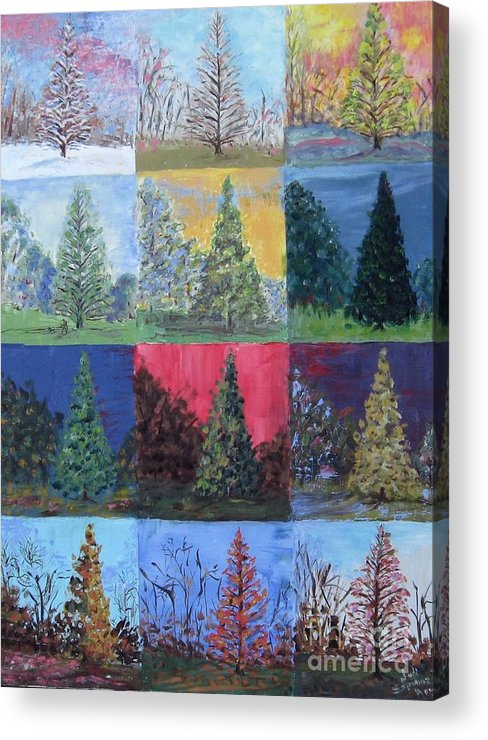 Trees With Different Backgrounds Acrylic Print featuring the painting Seasons of a Dawn Redwood - SOLD by Judith Espinoza
