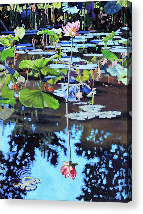 Garden Pond Acrylic Print featuring the painting Lotus Reflections by John Lautermilch