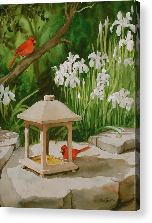 Birds Acrylic Print featuring the painting Cardinals Feeding by Faye Ziegler