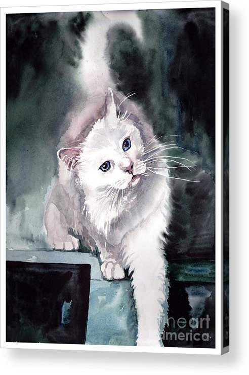 Little Acrylic Print featuring the painting Foxy Lady by Suzann Sines