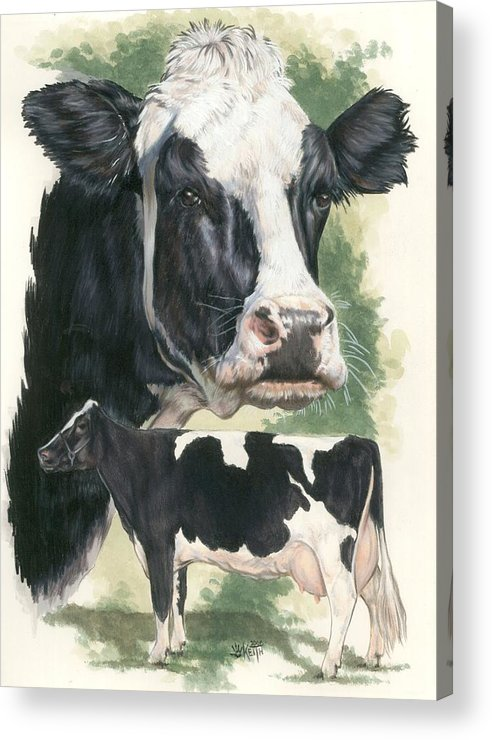 Cow Acrylic Print featuring the mixed media Holstein by Barbara Keith