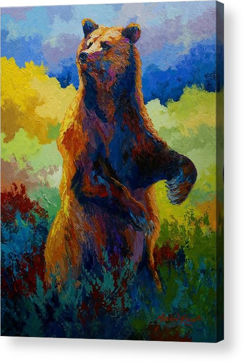 Bear Acrylic Print featuring the painting I Spy - Grizzly Bear by Marion Rose