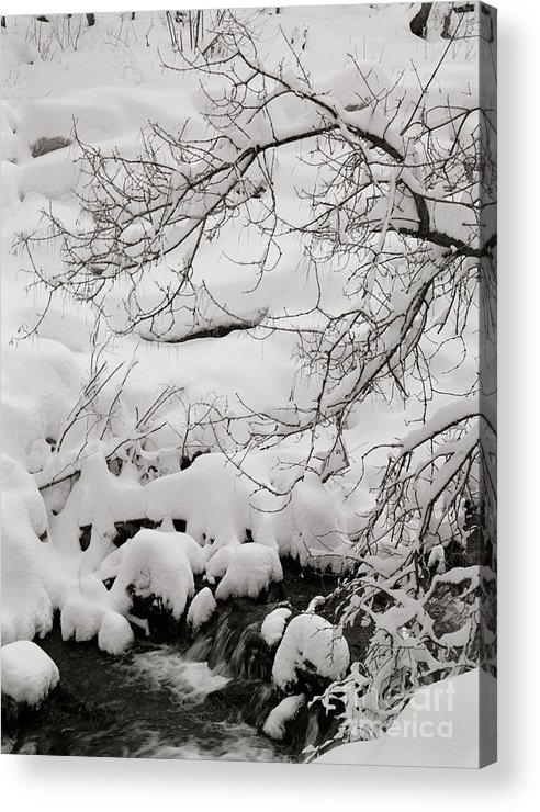 Utah Acrylic Print featuring the photograph Lambs Canyon in Winter by Dennis Hammer