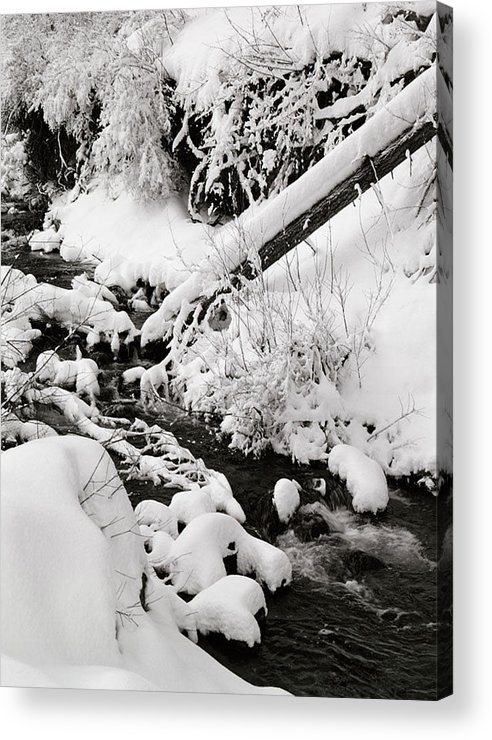 Mill Creek Acrylic Print featuring the photograph Mill Creek Canyon in Winter by Dennis Hammer