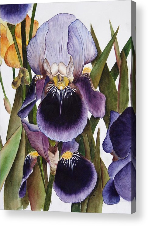 Iris Acrylic Print featuring the painting My Iris Garden by Mary Gaines