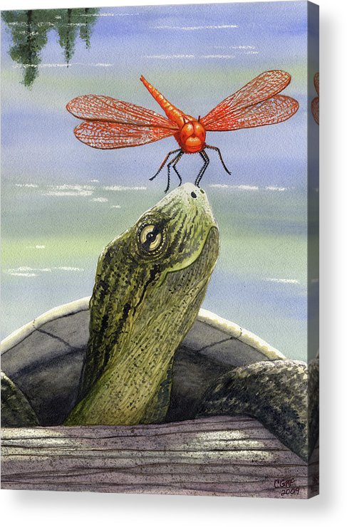Dragonfly Acrylic Print featuring the painting Orange Dragonfly by Catherine G McElroy