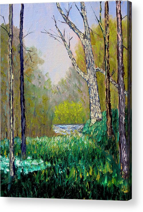 Trees Acrylic Print featuring the painting Park Meadow by Stan Hamilton