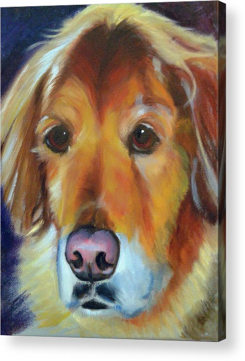 Pet Acrylic Print featuring the painting Teddy by Kaytee Esser