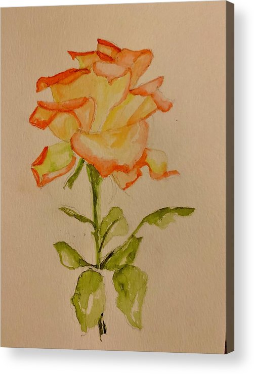 Rose Acrylic Print featuring the painting A Rose by Patricia Halstead